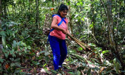 Integran saberes indígenas en plan de trabajo para reducir emisiones de carbono en Amarakaeri