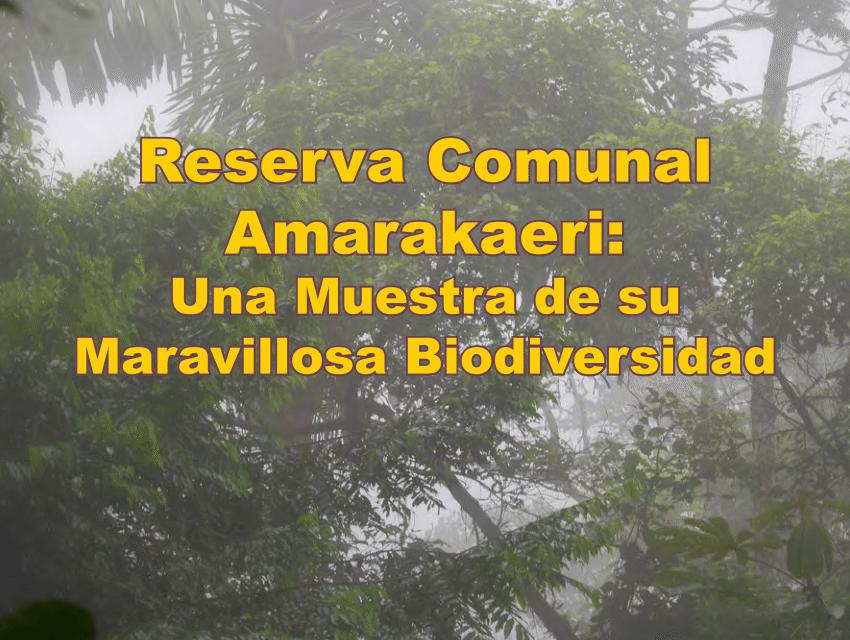 Smithsonian: presenta avance de la investigación científica en la Reserva Comunal Amarakaeri