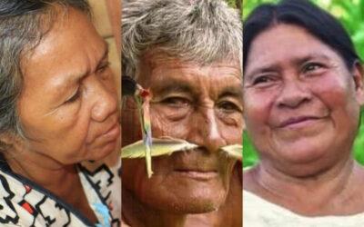 """Amarakaeri no es solo bosque, es cultura viva"""