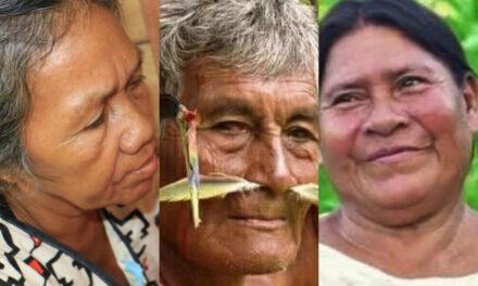 Walter Quertehuari: Amarakaeri no es solo bosque, es cultura viva