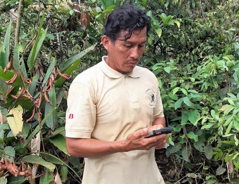 Vigilantes comunales registran plantones de castaña reforestados en CN Puerto Luz