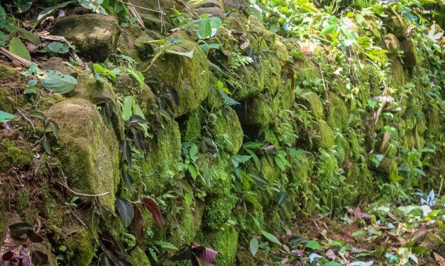 Declaran patrimonio cultural de la Nación al Sitio Arqueológico Casa del Inca en la Reserva Comunal Amarakaeri
