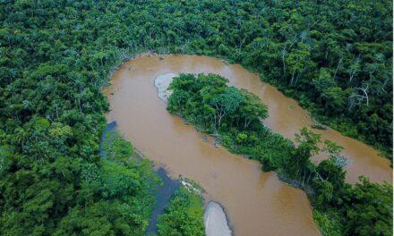 Evaluaciones confirman que ríos están saludables en Amarakaeri
