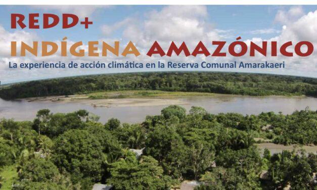 REDD+ Indígena Amazónica
