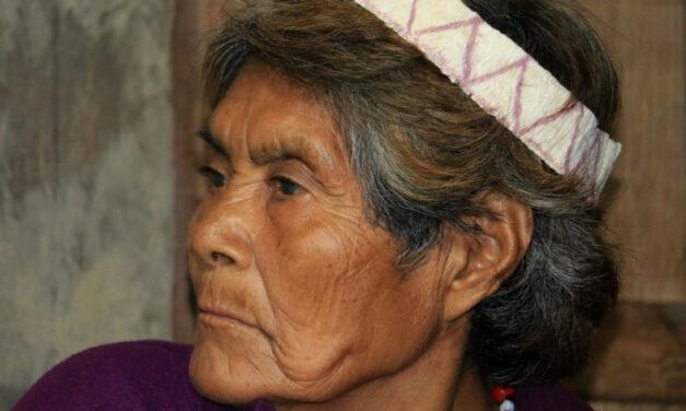 Las matriarcas de la Reserva Comunal Amarakaeri