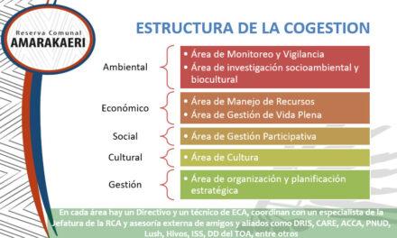 Estructura de trabajo de la cogestión de la Reserva Comunal Amarakaeri