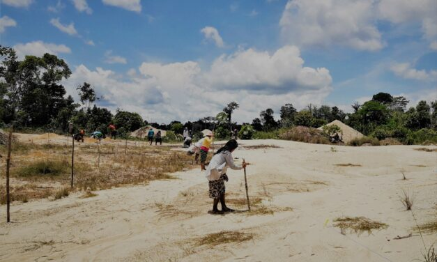 Investigación en la Reserva Comunal Amarakaeri
