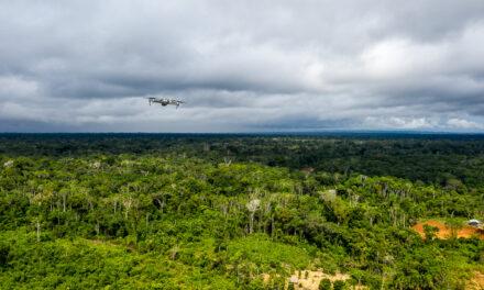 El bosque es fuente de vida y recursos para los pueblos indígenas