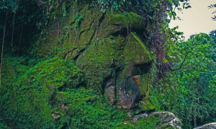 Declaran patrimonio cultural de la Nación al Rostro Harakbut