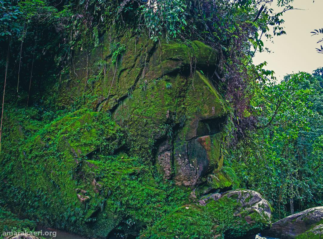 Se reconoce al Rostro Harakbut como patrimonio cultural de la Nación a través de la Resolución