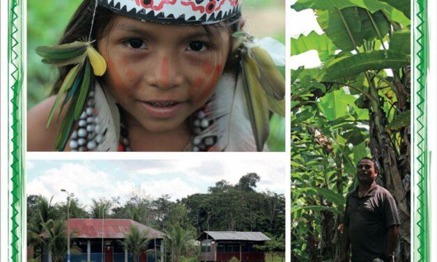 Plan de Vida Plena y Gobernanza Territorial de Comunidad nativa Puerto Azul Mberowe